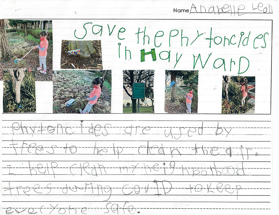 Text of 1st place winning entry for K-1 category