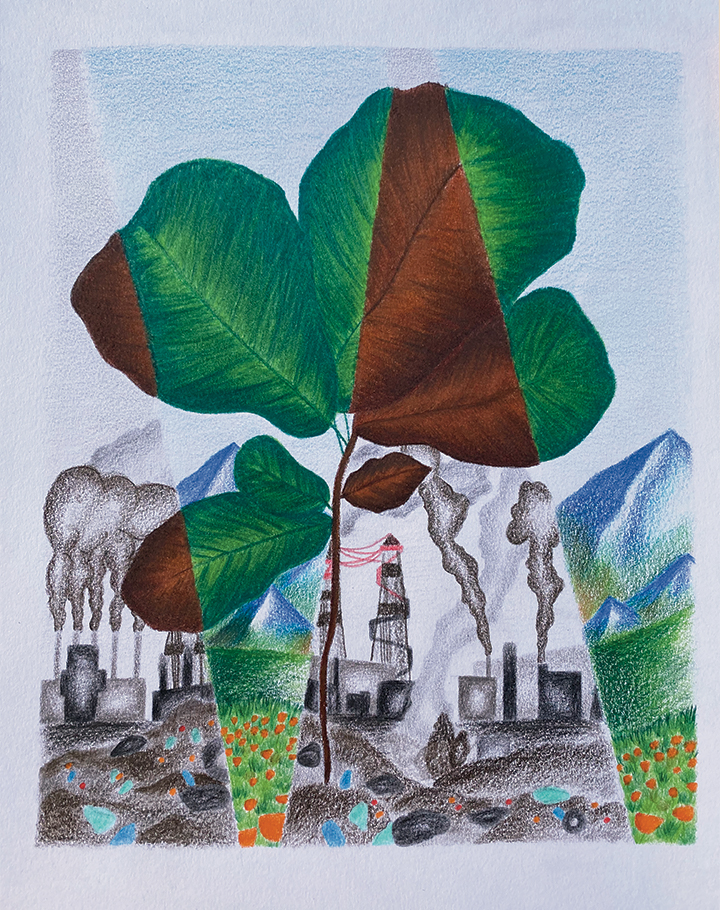 Artwork split in pieces showing plant life and power plants