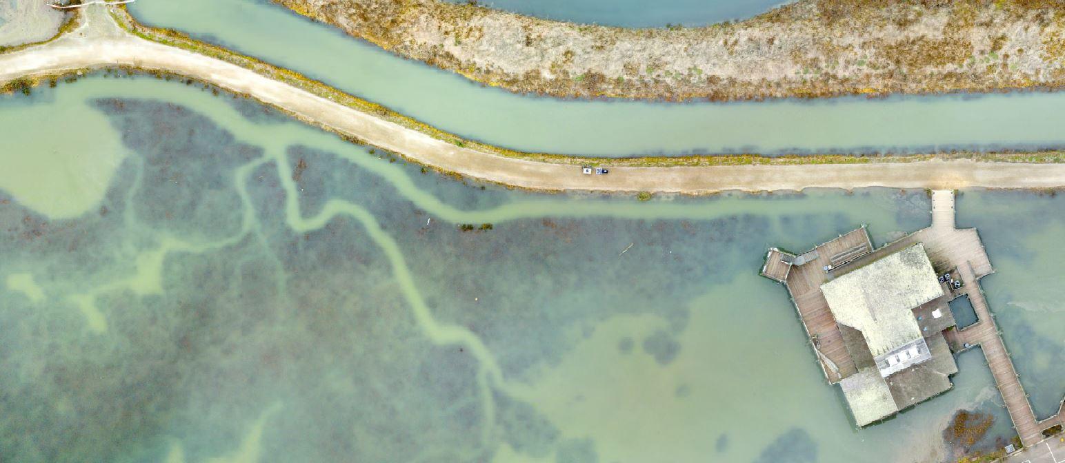 Close-up aerial photograph of San Francisco Bay Trail and Hayward Shoreline Interpretive Center