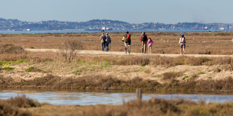 A family walking on one of the shoreline trails