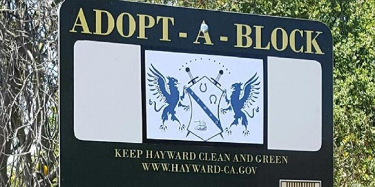 Adopt-a-Block Program