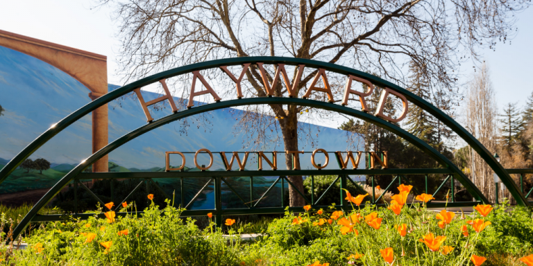 "Green arch with gold lettering that says ""Hayward Downtown"" over a field of poppies"