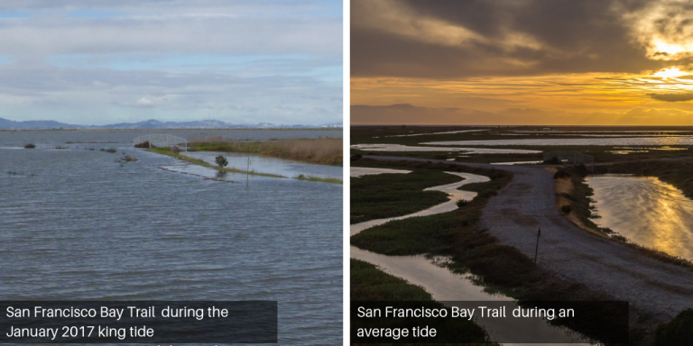 Side by side views of the Hayward shoreline during a normal and king tide