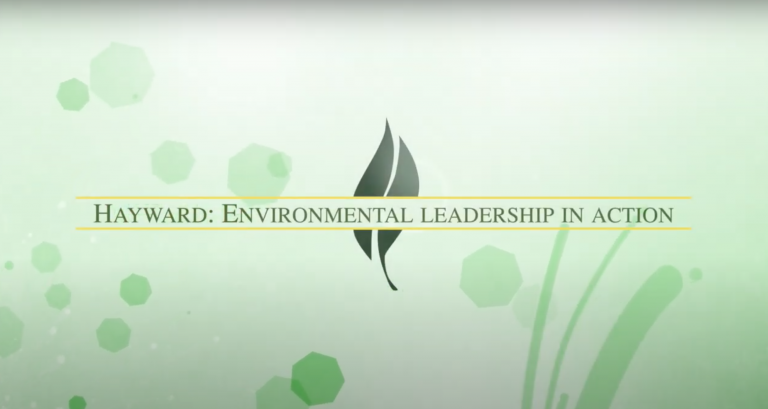 A green background with the words Environmental Leadership
