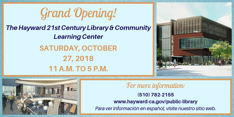 Blue Library Grand Opening Flyer