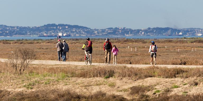 Hayward Shoreline Bike and Pedestrian Path