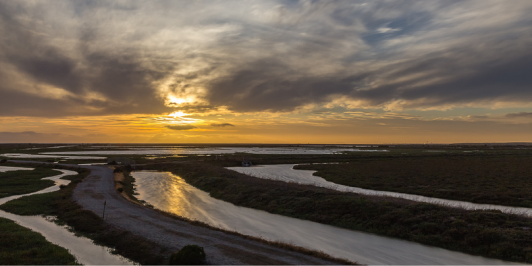 Hayward Shoreline at sunset