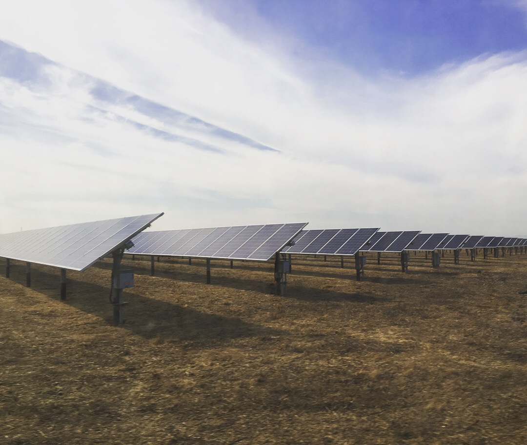 1MW of solar panels generate electricity for City facilities in field behind WPCF